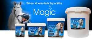magic.2018png