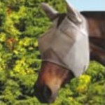cashel-crusader-fly-mask-with-ears-1397076190-jpg