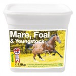naf-mare-foal-youngstock-18kg-1342289121-jpg
